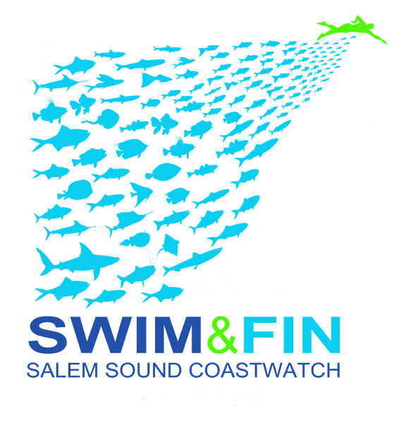 Swim & Fin-Race for Salem Sound
